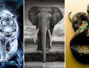 Országos Természet- és Környezetvédelmi Filmnapok a Szent-Györgyi Albert Agórában