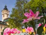 Mozdulj ki! - szezonnyitó ingyenes élményséta Szegeden