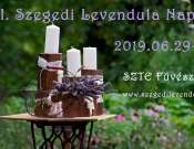 Szegedi Levendula Napok a Füvészkertben
