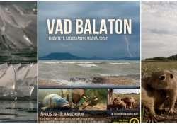 Vad Balaton - A tó felfedi titkait