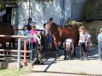 Igazi Lovas Tábor, csak a lóról és a lovaglásról